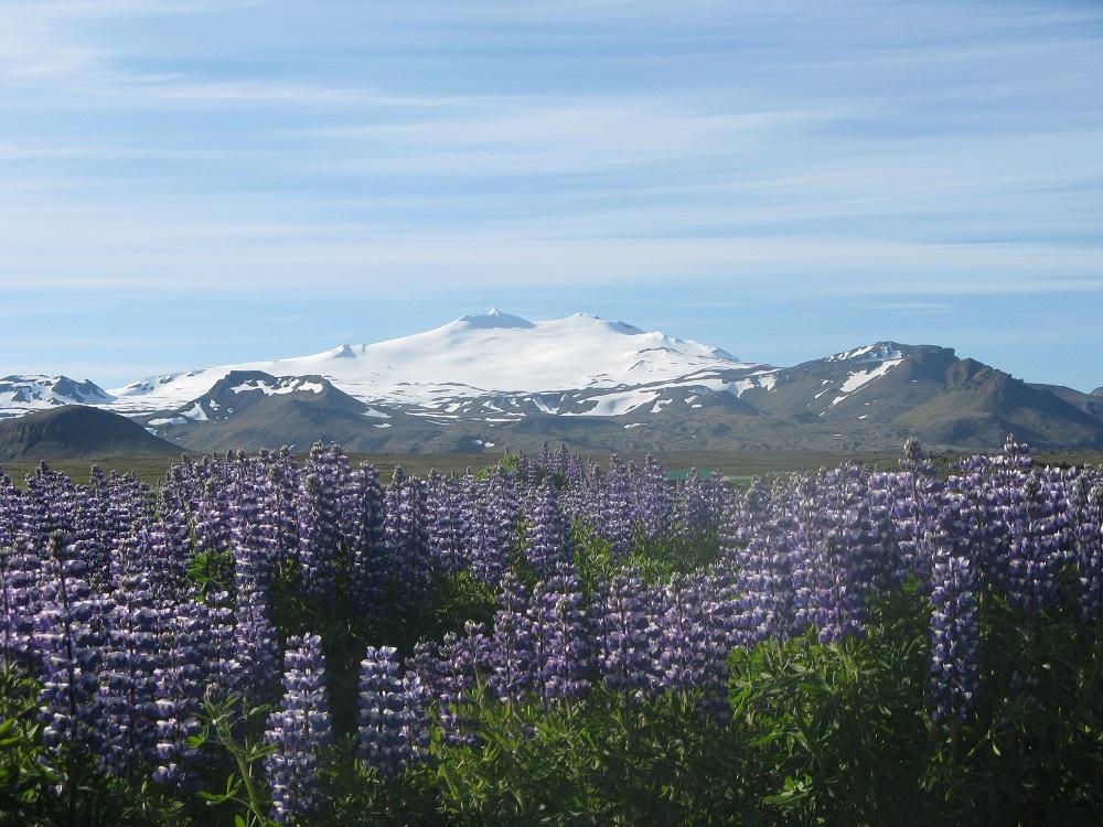 Snaellsjökull Islande
