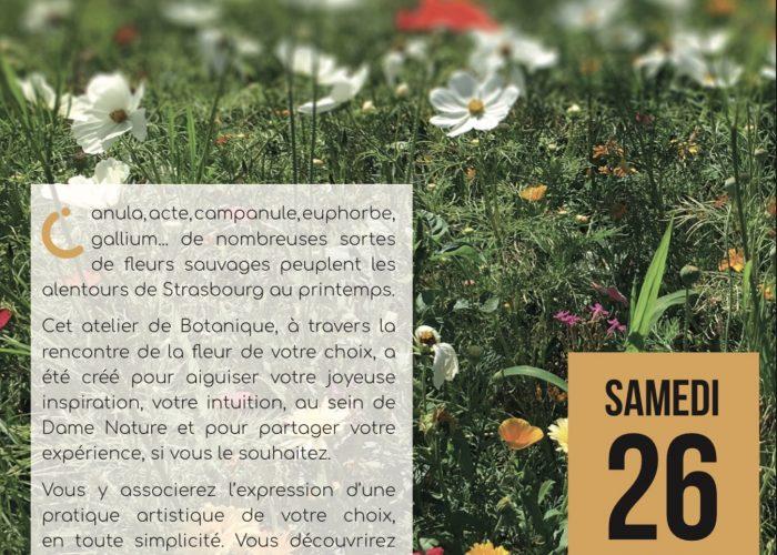Initiation à la botanique créative